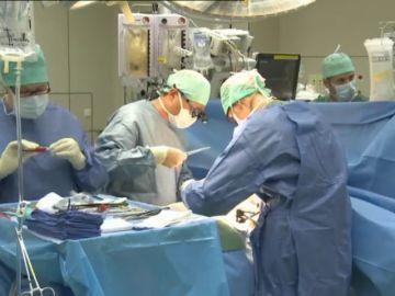 Holanda aprueba una ley que convierte automáticamente a todos los ciudadanos en donantes de órganos