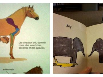 librosimageneswtf.jpg