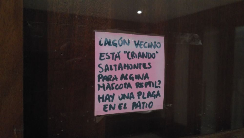 RUTENIADO.jpg