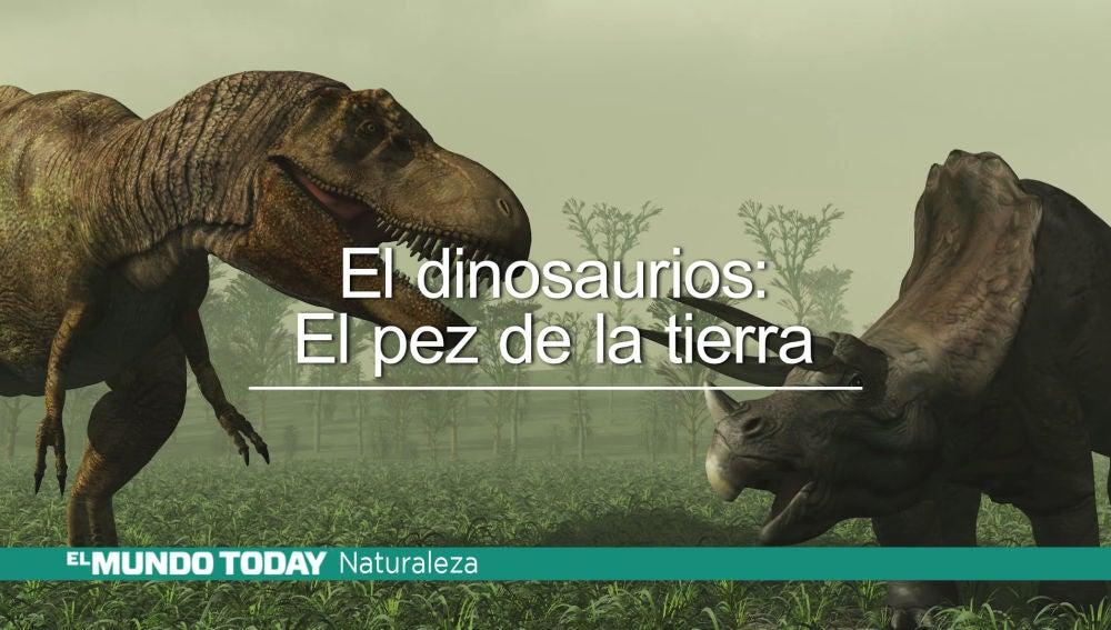 emetdinosauriosok.jpg