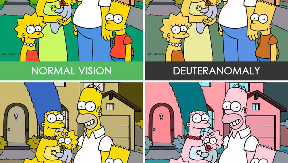 different-types-color-blindness-photos-37.jpg