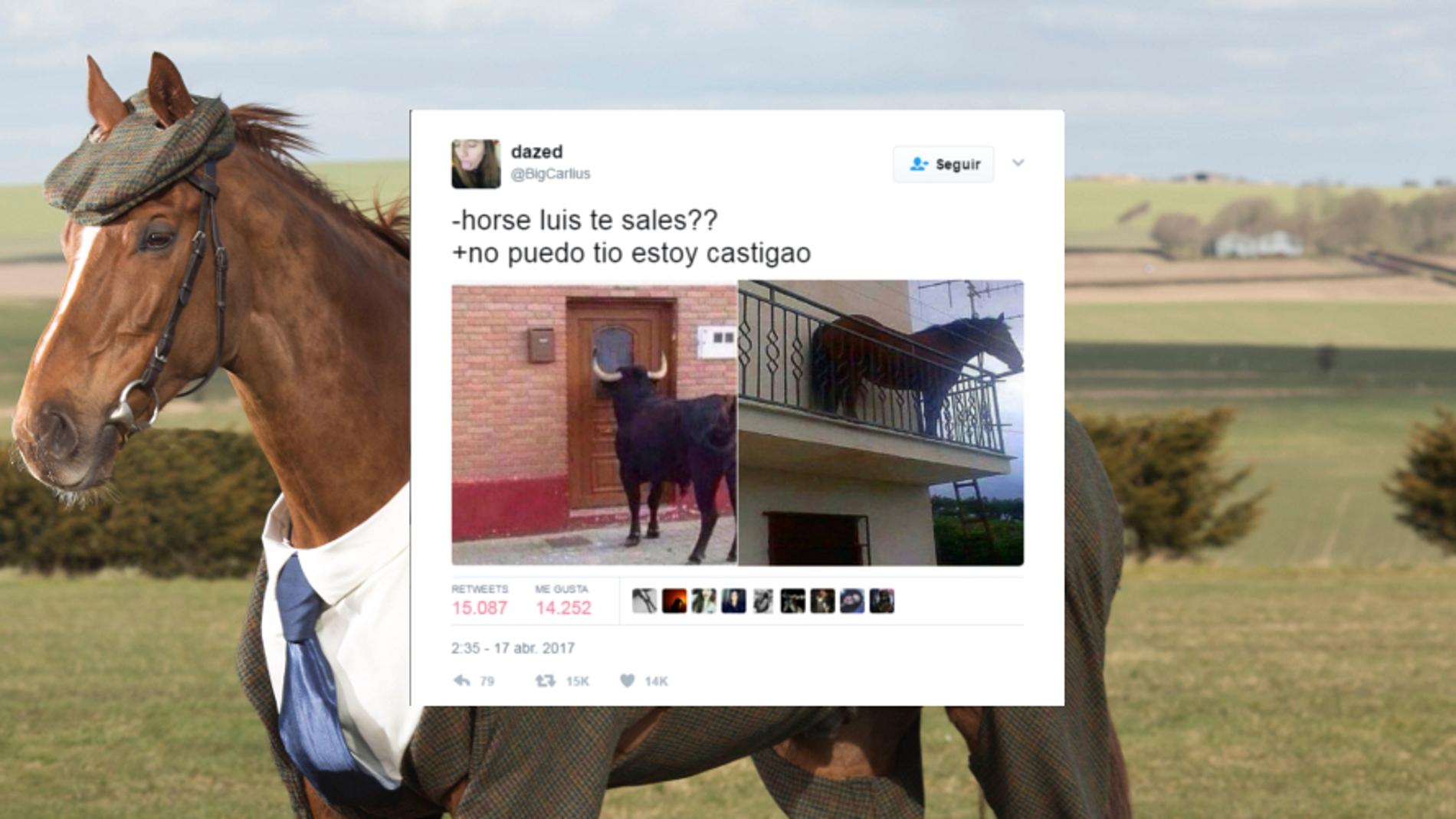 horseluisportada.jpg