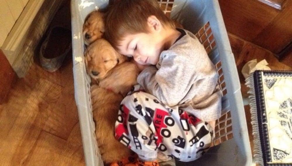 20-fotos-que-demuestran-que-cualquier-nino-debe-crecer-con-un-perro-1507628670.jpg
