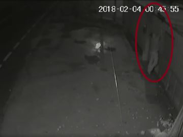 Un hombre tira por los aires a una perra embarazada