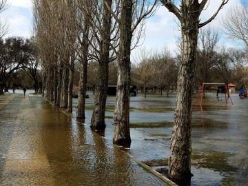 El Río Adaja a su paso por Ávila, en el umbral de alerta