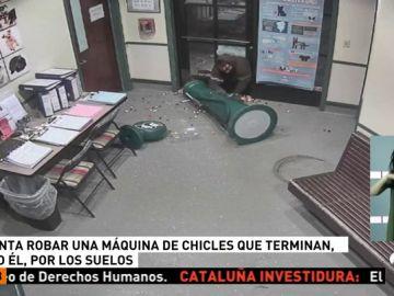 Un intruso se cuela en un refugio de animales para robar una máquina de chicles y acaba destrozándola en el intento