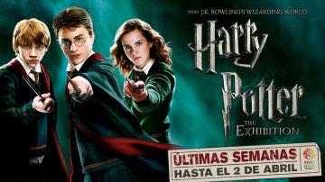 Concurso 'Harry Potter: The Exhibition'