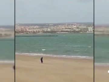 VIDEO_MELILLA