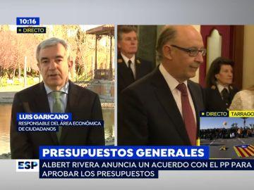 Luis Garicano, responsable del área económica de Ciudadanos