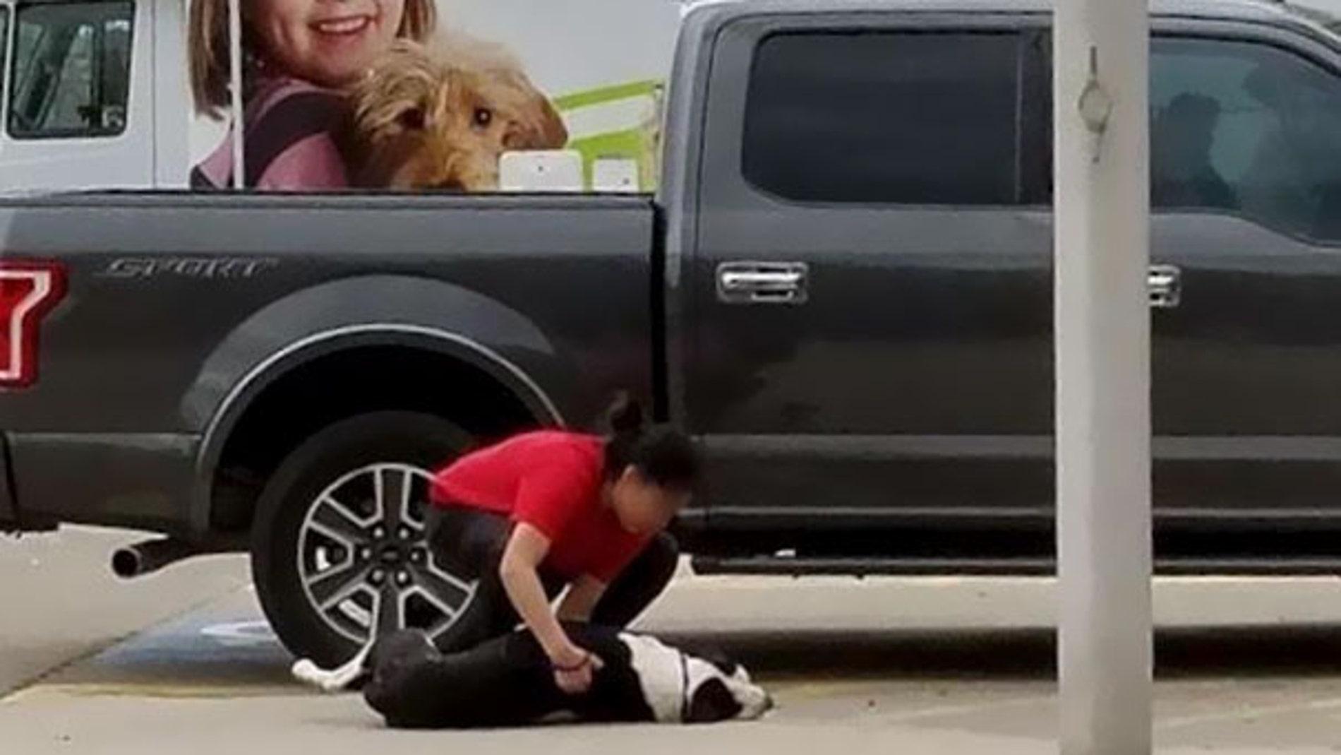 Arrastrado a la perrera