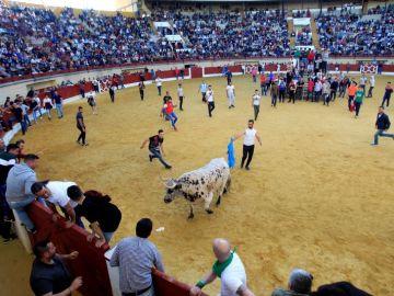 Sin incidentes en el ya tradicional Toro Embolao en Los Barrios (Cádiz)