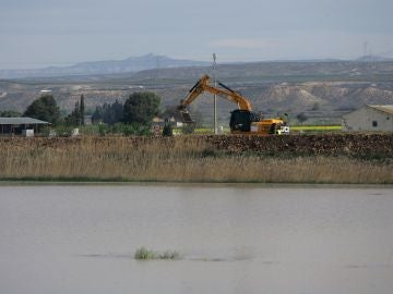 La UME refuerza las orillas en Pina de Ebro