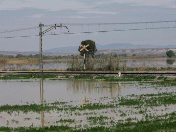 Crecida del Ebro en la Ribera Baja