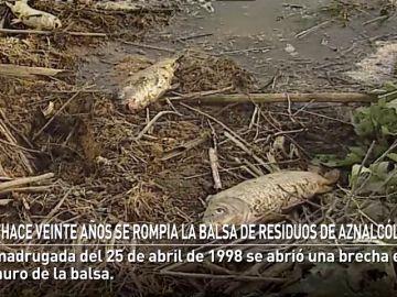 La balsa de residuos de Aznalcóllar se rompiá hace veinte años