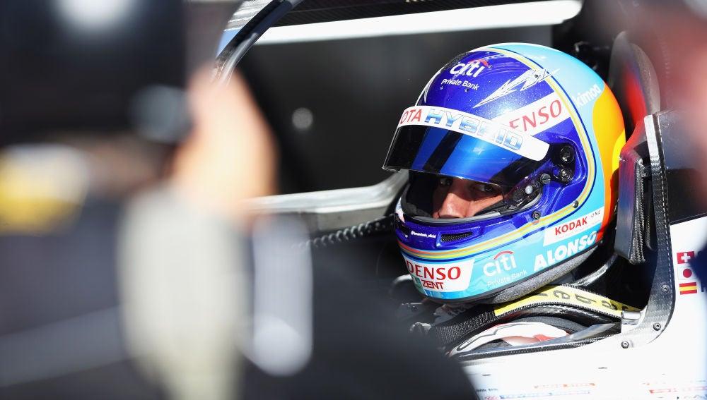 Fernando Alonso, dentro de su Toyota