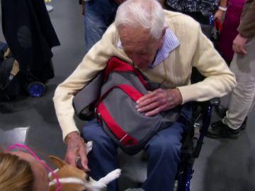 El australiano David Goodall llega a Suiza para someterse a una eutanasia pese a no padecer una enfermedad terminal