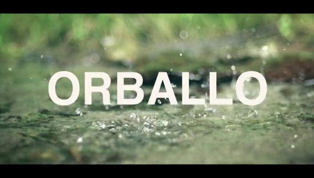 La Xunta de Galicia lanza un divertido vídeo para promocionar del Día de las Letras Gallegas