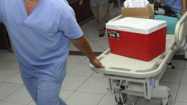 Personal sanitario transporta una nevera portadora de un órgano para un trasplante