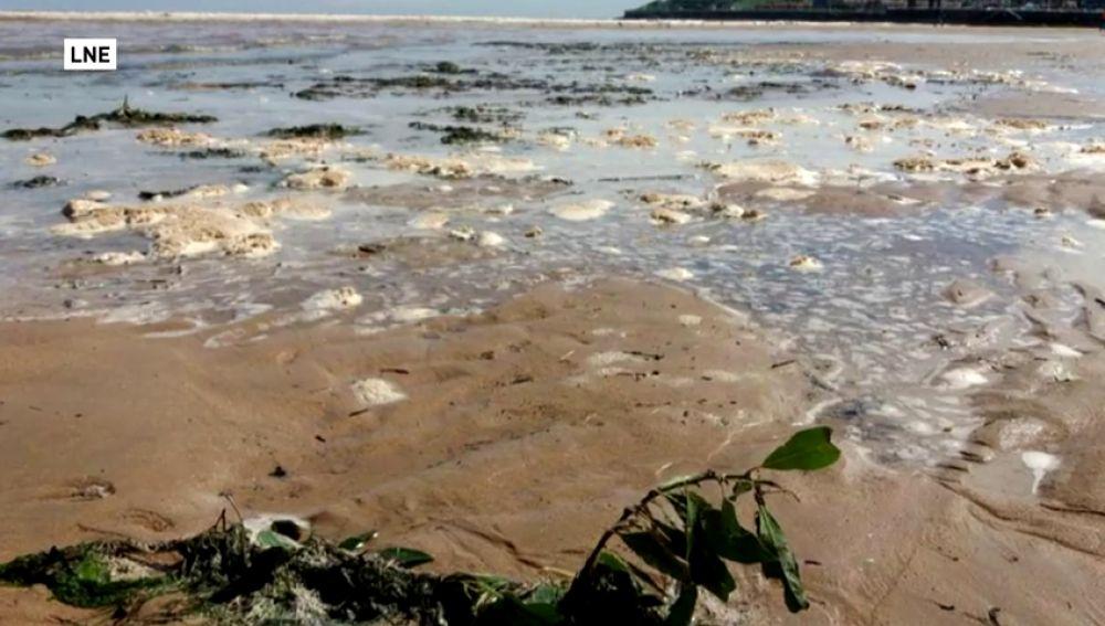 Cierran la playa de San Lorenzo por contener aguas residuales