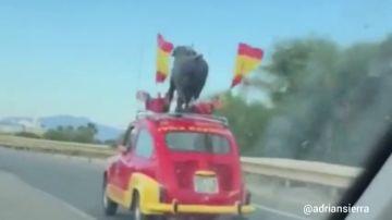 """El coche """"más español y muy español"""" circula ya por las carreteras andaluzas apoyando a la selección"""