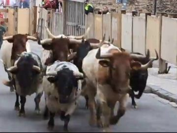 VIDEO REEMPLAZO: Si vas a Sanfermines, no hagas esto