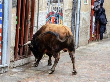Imagen de archivo de un toro durante un encierro