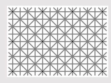Ilusión óptica de los puntos negros