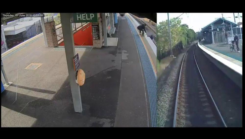 Un usuario del tren de Syney cae a la vía y casi es arrollado por un convoy