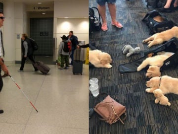 Cosas extrañas en los aeropuertos