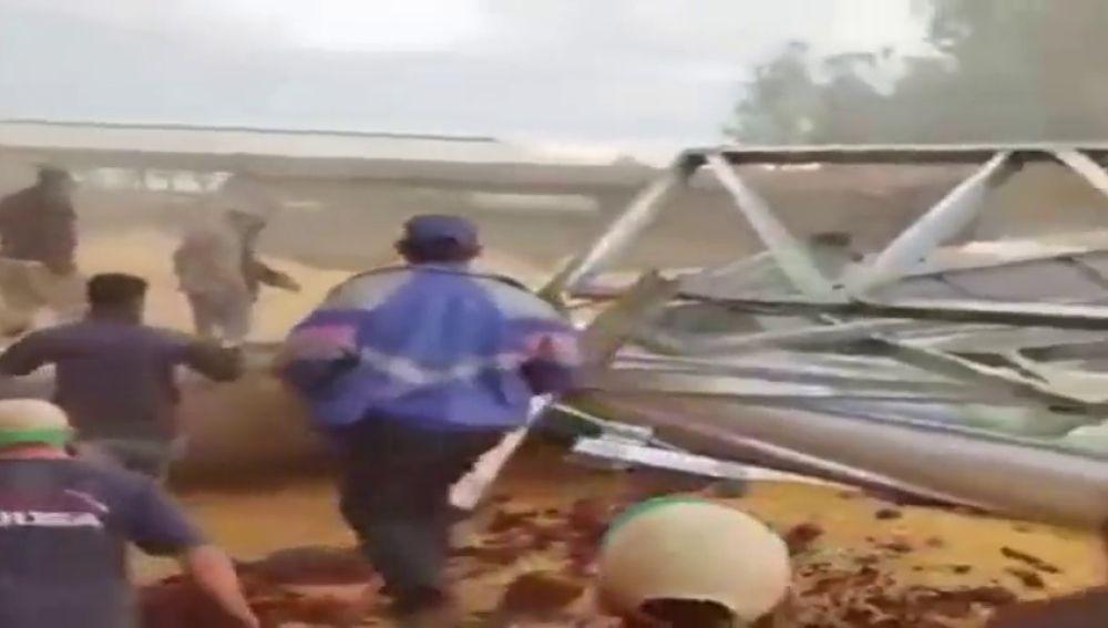 Un grupo de trabajadores se salvan de ser aplastados por cien mil kilos de granos de soja