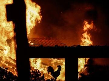 Noticias de la Mañana (24-07-18) Al menos 50 muertos y más de 150 heridos en los incendios fuera de control que rodean Atenas
