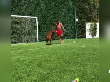 messi_perro