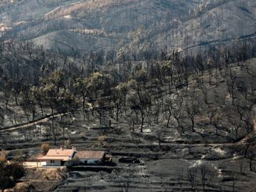 Vista de una zona devastada por los incendios en Portugal