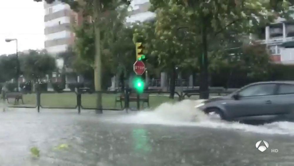 Una tormenta derriba árboles y obliga a cortar varias calles en Zaragoza