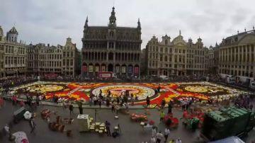 XXI Edición de alfombra floral en La Grand-Place de Bruselas