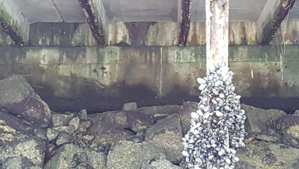 Parte de la estructura del puerto de Vigo