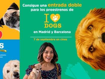 Concurso 'I love dogs'