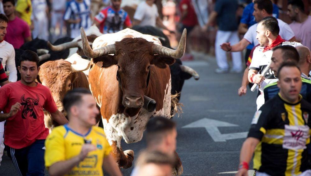 Primer encierro de San Sebastián de los Reyes