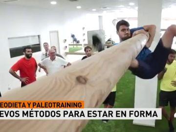 PaleoA3D
