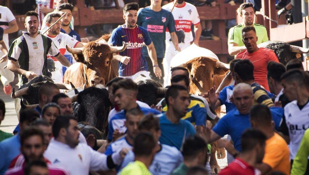 Segundo encierro de San Sebastián de los Reyes