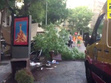 Atropello triple en el barrio de Salamanca en Madrid