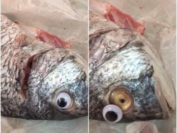 Pescados con el ojo falso y sin el ojo falso
