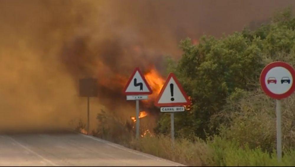 Estabilizado un incendio forestal en el paraje Valdeinfierno, en Los Barrios, en Cádiz