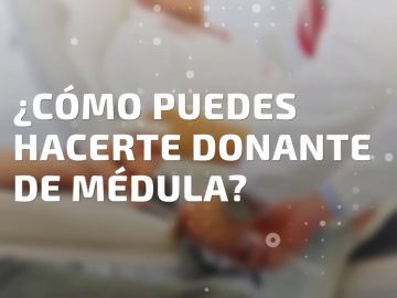 ¿Cómo puedes hacerte donante de médula ósea?