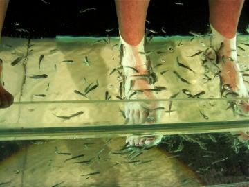 Pedicura con peces