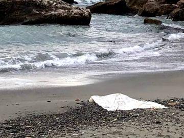 Hallado el cadáver de una mujer en una Playa de Granada