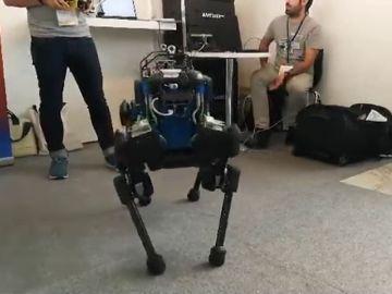 """Los Humanoides más """"blandos"""" protagonistas en el Congreso mundial de robótica en Madrid"""