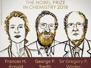 Frances H. Arnold, George P. Smith y Gregory P. Winter, galardonados con el Premio Nobel de Química 2018