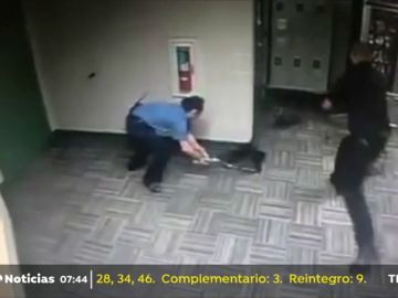 Tres policías persiguen durante dos horas a dos mapaches que se habían colado en una comisaría de Texas