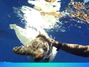 Los océanos podrían estar llenos de bolsas de plástico en el futuro